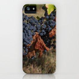 Vineyard Grape Clusters iPhone Case