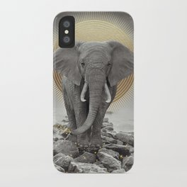 Strength & Courage iPhone Case