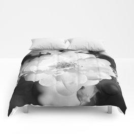 Filipa Comforters