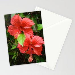 Two of a Kind, Double Blessings Stationery Cards