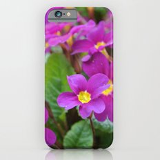 Along the Path iPhone 6s Slim Case