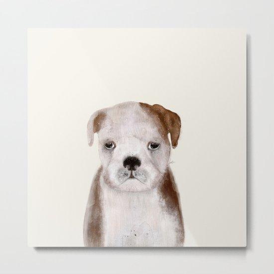 little bulldog Metal Print