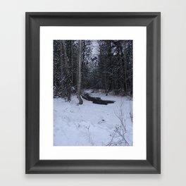 #406 BR CK UNDER ICE FORMATIONS,  POND CRK BITTERROOT MT Framed Art Print