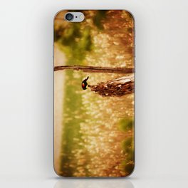 Bird Photography iPhone Skin