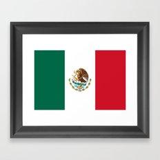 Flag of Mexico Framed Art Print
