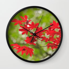 Acer leaves Wall Clock