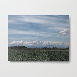 Strawberry Farm 2 Metal Print