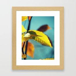 Famous fall 19 Framed Art Print