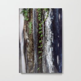 a tapestry of nature Metal Print