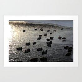 Photo 106 Art Print