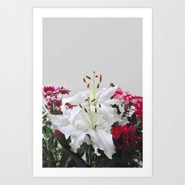 Floral Lilies Daisies Art Print