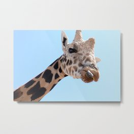 Hello There! Metal Print