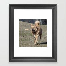 Running Dog Framed Art Print