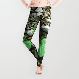 Squash Plant Leggings