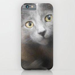 Russian Blue Kitten Portrait 3 iPhone Case