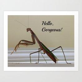 Hello, Gorgeous! Praying Mantis Art Print