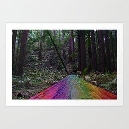 Rainbow Wood Road Art Print