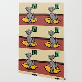 Weimaraner Wallpaper