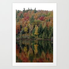 Warmth in Nature Art Print
