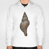 seashell Hoodies featuring Seashell by Judith Lee Folde Photography & Art