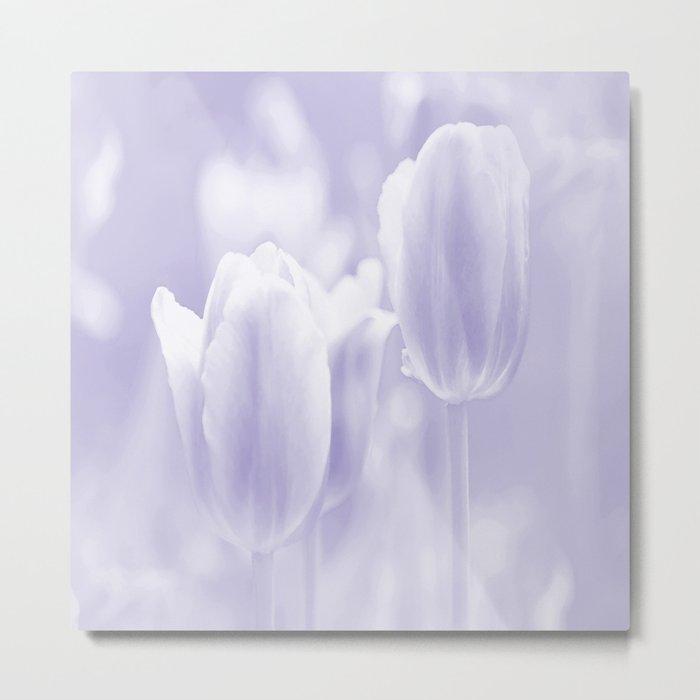 Day dream in shades of violet - spring atmosphere Metal Print