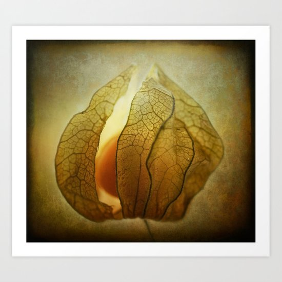 Hidden fruit..... Art Print