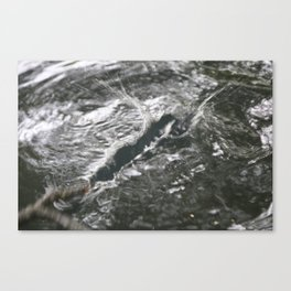 water stick abstract Canvas Print