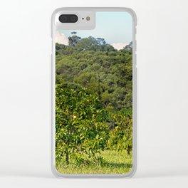 Beautiful citrus tree in rural area Clear iPhone Case