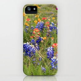 Bluebonnets, Indian Paintbrushes & Wildflowers iPhone Case