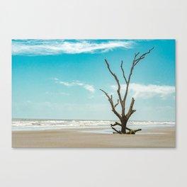 Solitaire Canvas Print