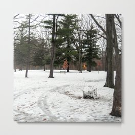 Winter Sequence 4 Metal Print