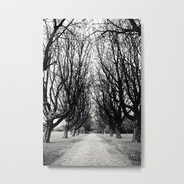 East Park HULL Metal Print