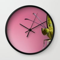 insect Wall Clocks featuring Insect by TJAguilar Photos