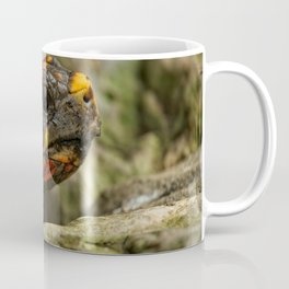 Red-Footed Tortoise Coffee Mug