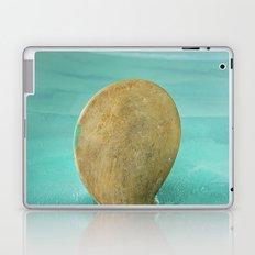 Propeller Laptop & iPad Skin