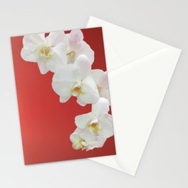Watermelon Orchid Stationery Cards