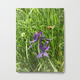 Camus Lily with Bee Metal Print