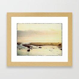 oregon coast seagulls Framed Art Print