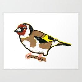Goldfinch - European Goldfinch Art Print