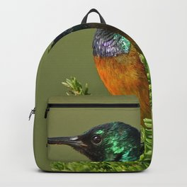 Orange Breasted Honey Bird Backpack