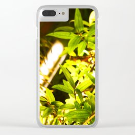 Simple and focused green leaves are shining Clear iPhone Case