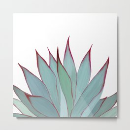 Elegant Agave Fringe Illustration Metal Print