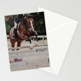 Bay Warmblood Stationery Cards