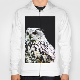 Eurasian Eagle-owl on a black background Hoody