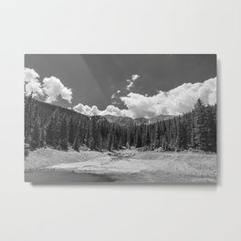 Ansel Adams be like... Metal Print