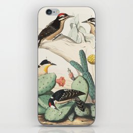Woodpeckers And Cacti iPhone Skin