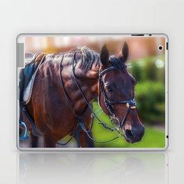 Horse Wall Art, Horse Portrait. Horse looking straight forward closeup. Laptop & iPad Skin
