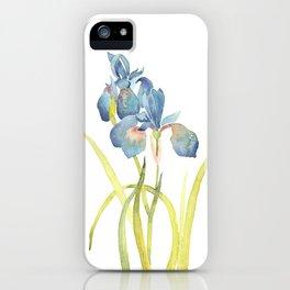 Watercolor flower Iris Siberica iPhone Case