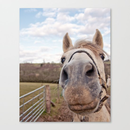 look at my horse... Canvas Print