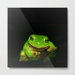 Kermit D. Frog Metal Print